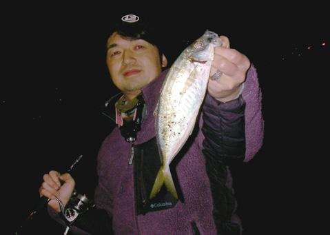 小田さんアジ28cm