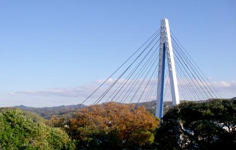 マリン大橋