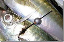 リサイクル釣具アジングメバリング