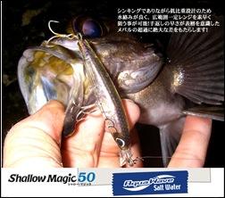 アクアウェーブ シャローマジック50