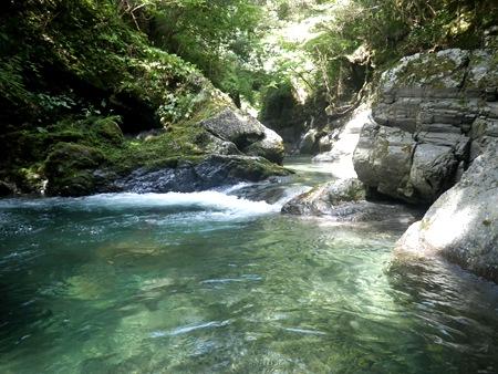トラウト 渓流Ⅱ