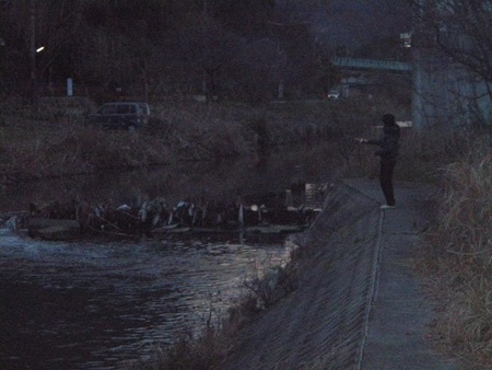 夕マズメ芦田川