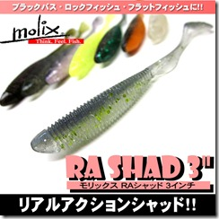 ra_shad3_1