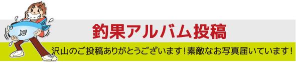 釣果アルバム投稿フォーム