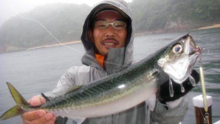 シャチョー大鯖