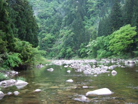 渓流へ再び