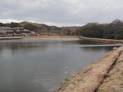 野池密集地帯2