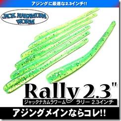 rally23_1