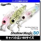 shallow_m1