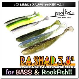 ra_shad38_1