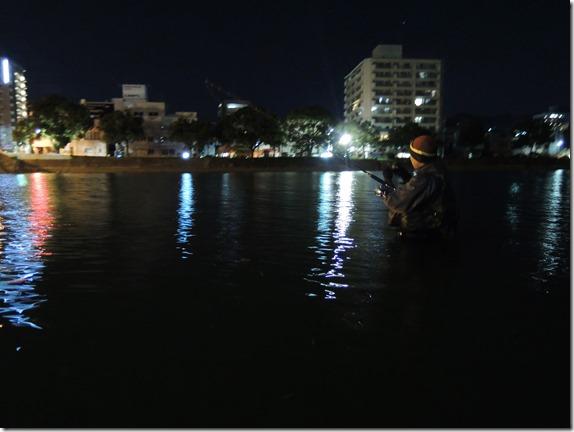 アピア Hベイト 広島市内河川 シーバス