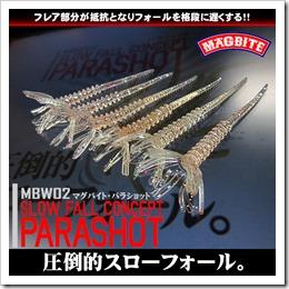parashot_1