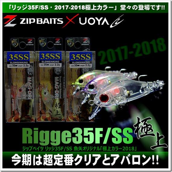 rigge35_goku2018