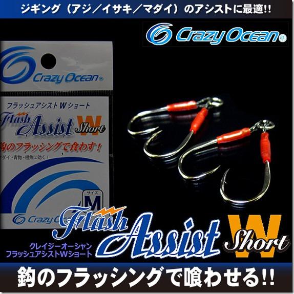 flash_assist_ws1