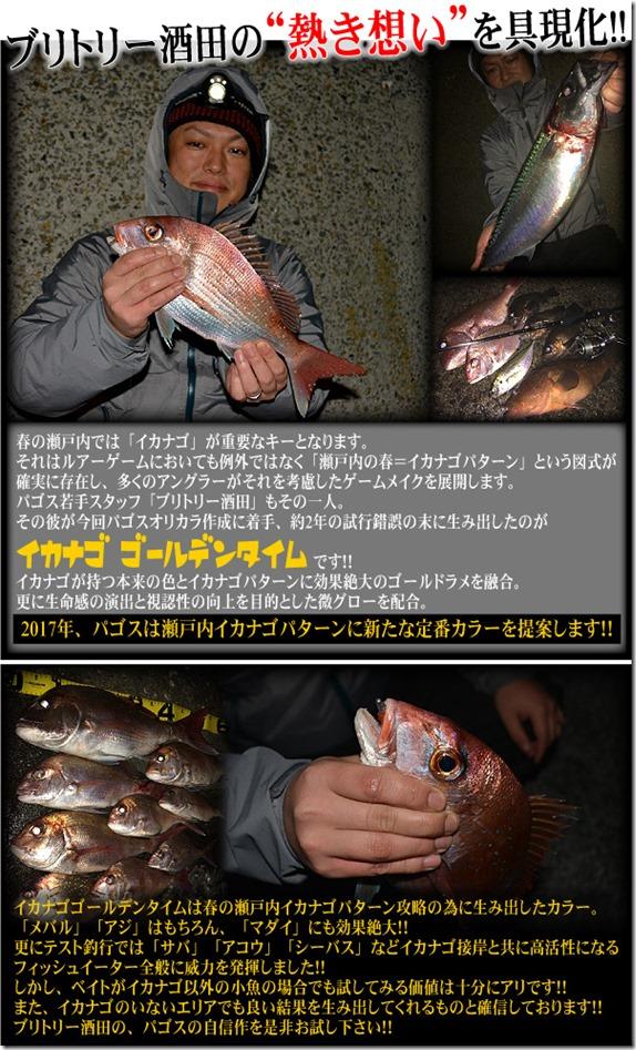 ajirin_ikanago1